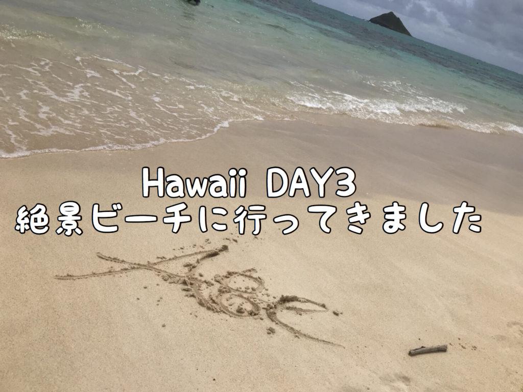【Hawaii Day3】「天国の海」ラニカイビーチへ行ってきました