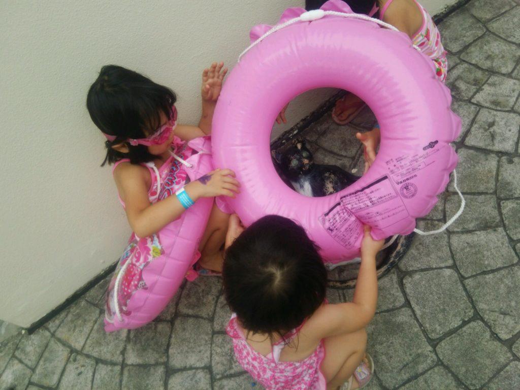 子供連れに大人気!蒲郡のおすすめプールと言えば?