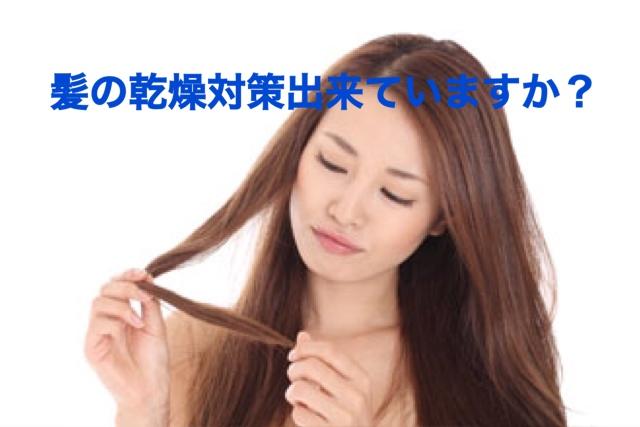 乾燥の季節到来!髪の乾燥対策は出来ていますか?