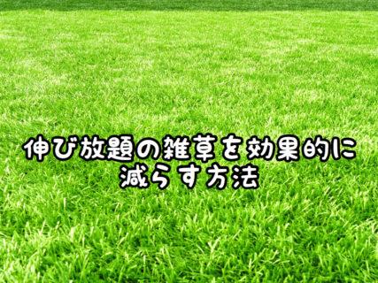"""【ガーデニング】これからバンバン増えてくる""""雑草""""を効果的に減らす方法"""