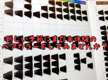 【イメージ】あなたはどちらが好み?ヘアカラーの暖色系と寒色系