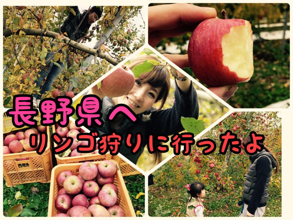 【信州】子供を連れて初めてのリンゴ狩りに行って来ました