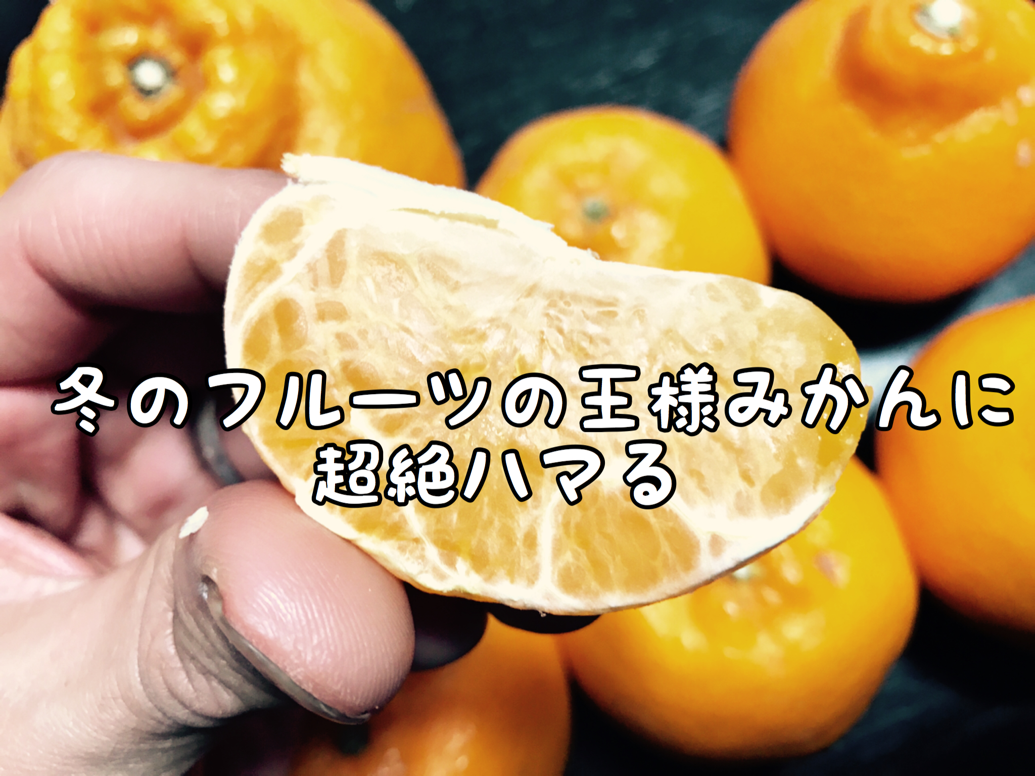 【果実】テンチョー最近「みかん」に超絶はまる。こんなに種類があるとは!!