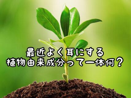 """【ヘアケア】最近よく耳にする""""植物由来""""って一体何?"""