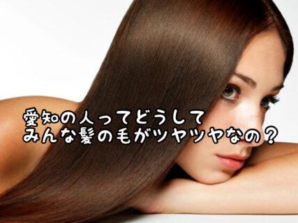 【祝】愛知県民歓喜!!この度日本一髪がキレイな県民に認定されました