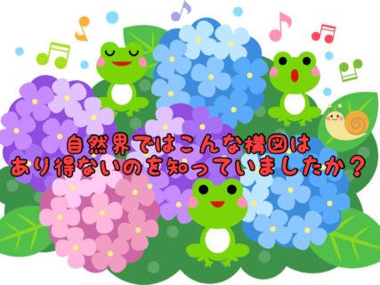 【雑学】実はカタツムリって紫陽花が嫌いなのを知っていましたか?