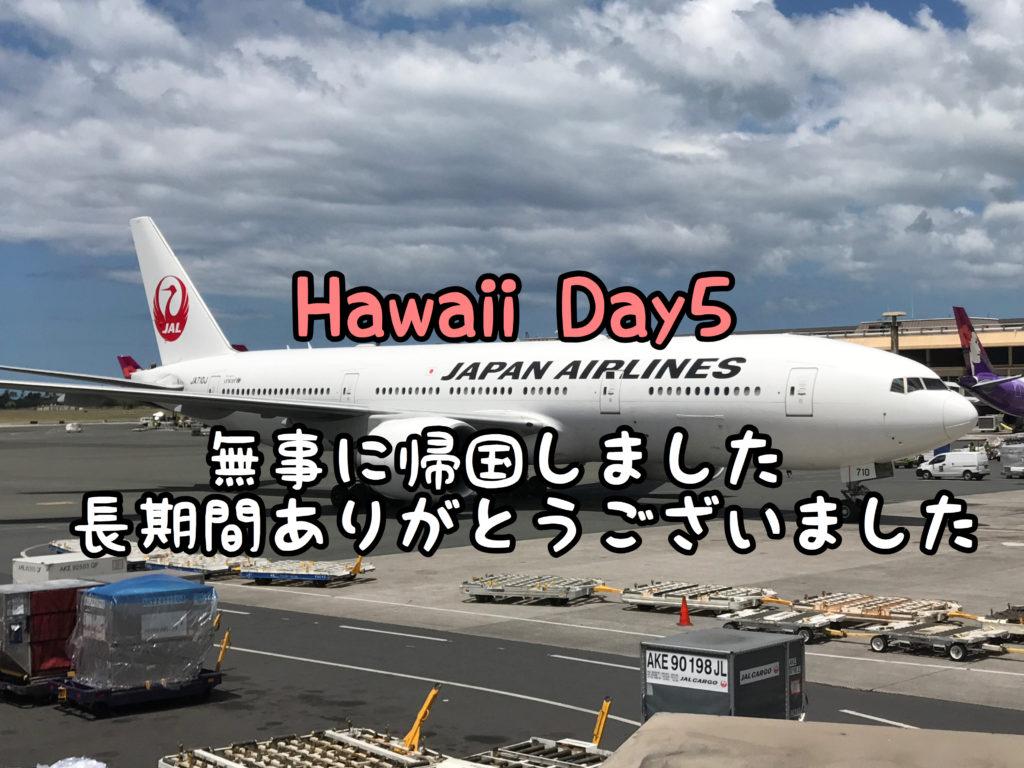 【DAY5】さようならハワイ!ただいま日本!長期間ありがとうございました