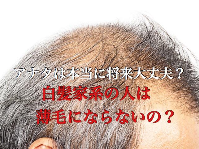 【AGA&白髪】オレは白髪家系だから薄毛の心配はないし・・・ホントのところはどうなの?
