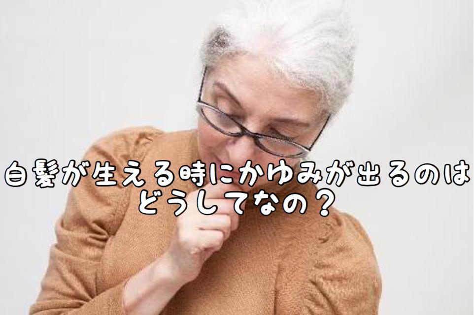 【悩み】白髪が生えてくるときにチクチク痒みが出るのはどうしてなの?