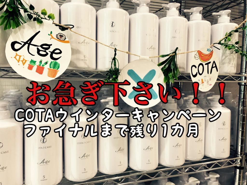 【COTA】ウインターキャンペーン終了まで残り1ヶ月!この機会をお見逃しなく!!