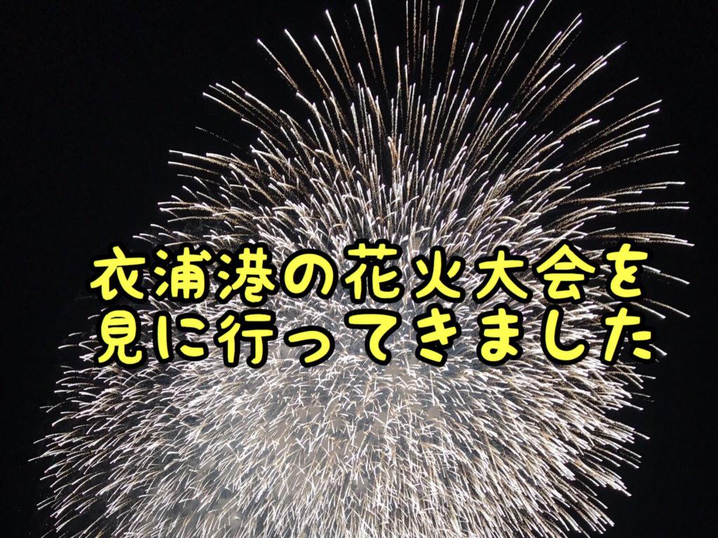 【夏祭】今年最初の花火大会を臨海公園に見に行ってきました