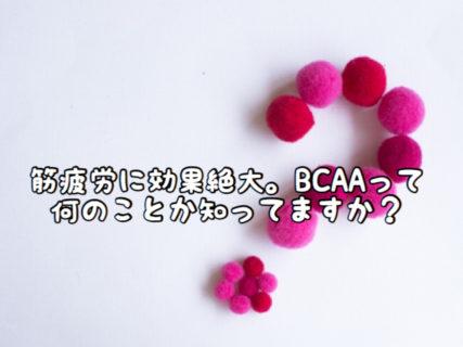 """【サプリメント】あなたは""""BCAA""""って言葉や効果を聞いたことがありますか?"""