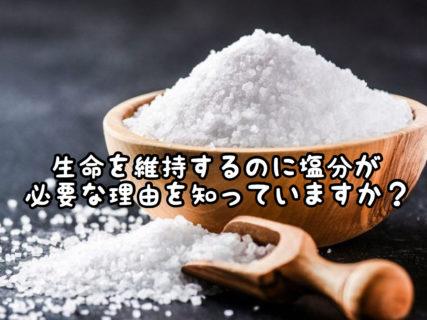 【生命維持】体に水分が必要なのは分かるけど塩分ってどうして要るの?