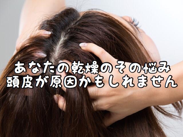 【寒寒気】このシーズンあなたの想像以上に「頭皮の乾燥」が深刻かもしれません