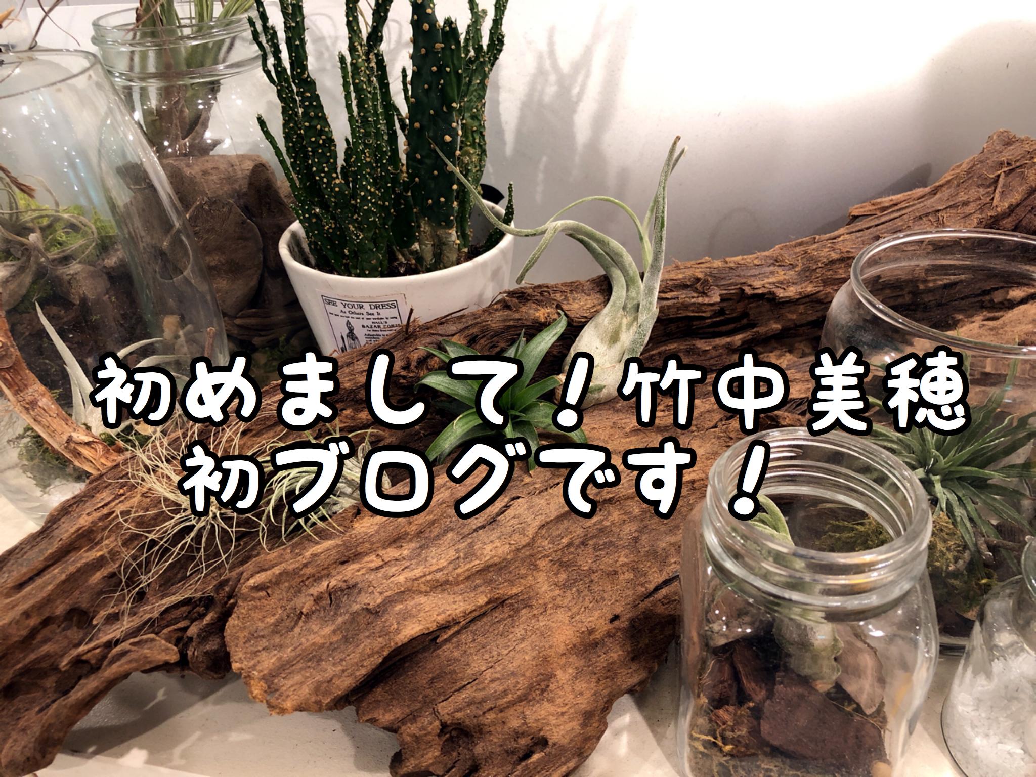 Ageご愛好のお客様はじめまして!!COTAが大好きな竹中美穂です!