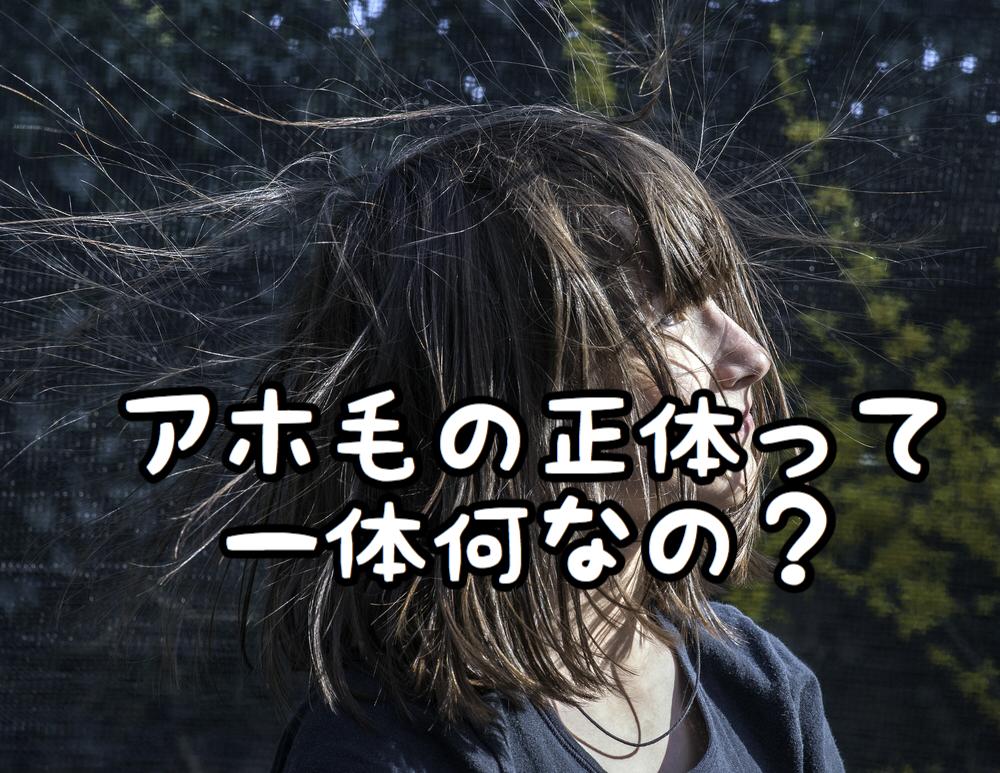 【悩み】ピョンピョン飛び出す「アホ毛」の正体って一体何なの?