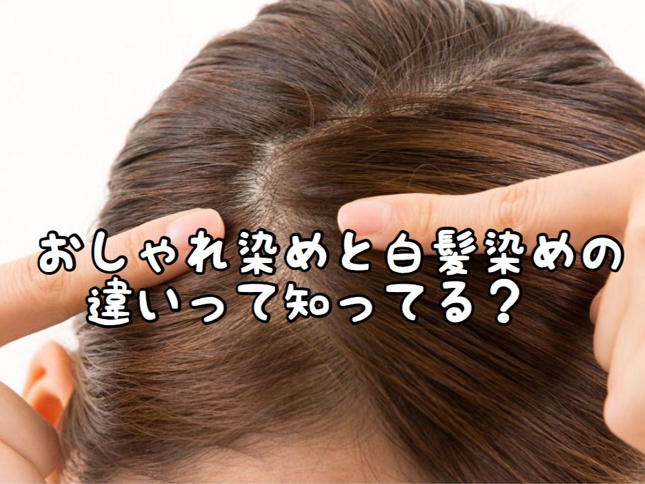 【ヘアカラー】白髪染めとおしゃれ染めの薬剤って何が違うの??