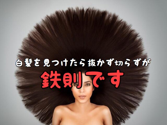 【ご注意】白髪を抜いたり切ったりすると思わぬところにしわ寄せがきます!