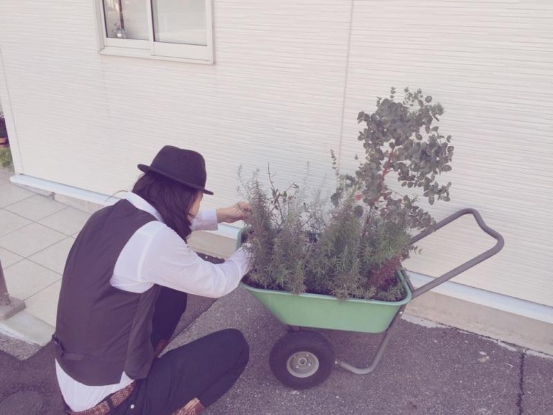 年内最後の庭いぢり
