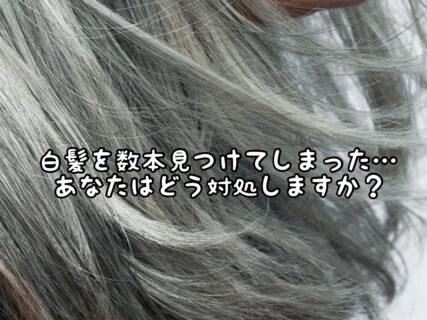 【悩み】今までなかった白髪を見つけた時にあなたはどう対処しますか?